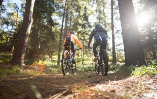 Mountainbike aktivitet