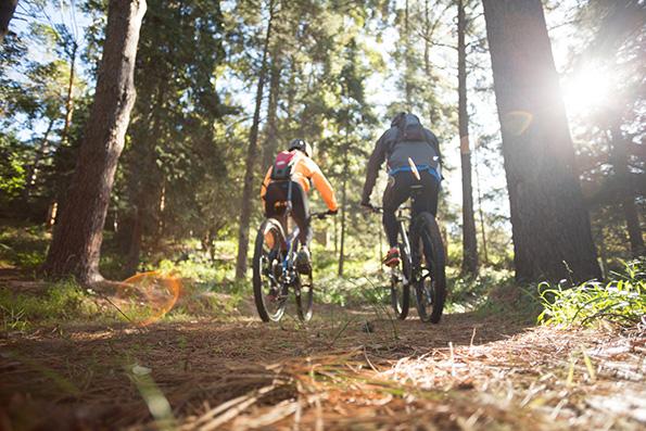 par soom cyklar i skogen